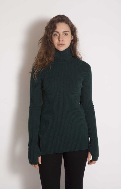Fine Rib Roll Neck Holly